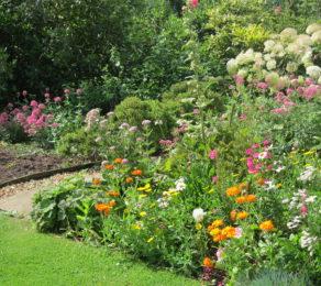 Pat-Garden-e1554713145415-292x260