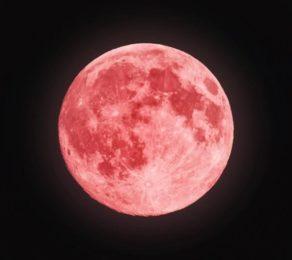 pinkmoonscorpio-292x260